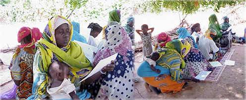 Group taking research survey in Niger